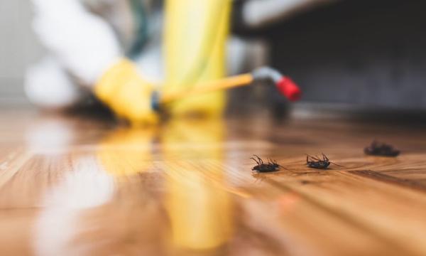 pest control Beaverton